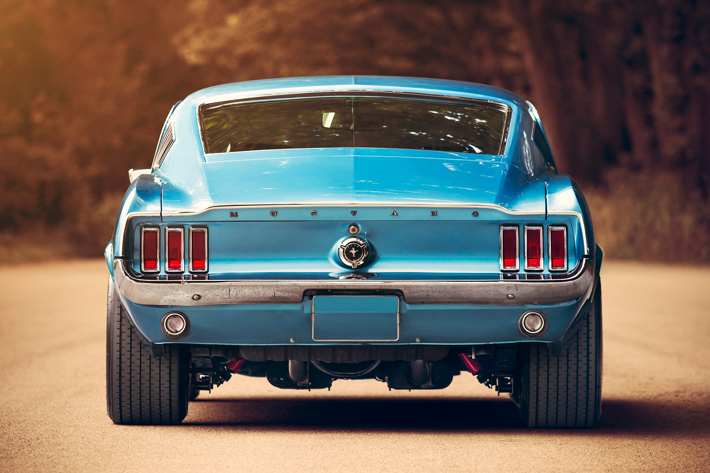 http://gerlingracing.com/wp-content/uploads/2015/01/projects-67-Ford-mustang-fastback-1967_16.jpg