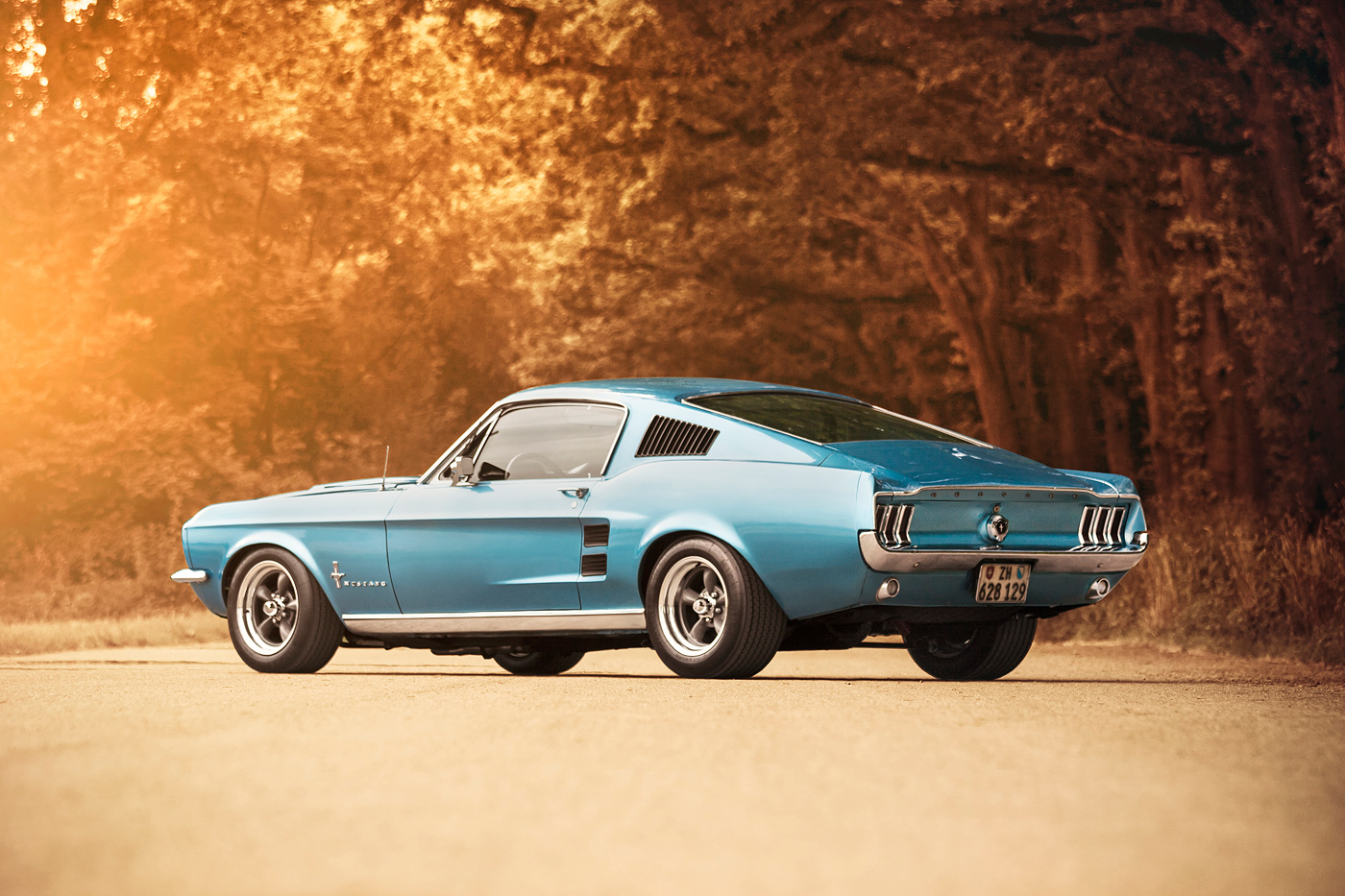 http://gerlingracing.com/wp-content/uploads/2015/01/projects-67-Ford-mustang-fastback-1967_17.jpg